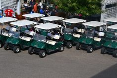 Are you looking for budget-friendly golf cart sales? Then look no further than Monster Carts LLC, a family-owned golf cart company that offers gas and electric golf carts from leading brands you know and trust.