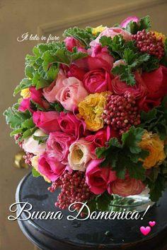rose,ranunculus and pepperberry 🌸 🌹 ᘡℓvᘠ □☆□ ❉ღϠ □☆□ ₡ღ✻↞❁✦彡●⊱❊⊰✦❁ ڿڰۣ❁ ℓα-ℓα-ℓα вσηηє νιє ♡༺✿༻♡·✳︎· ❀‿ ❀ ·✳︎· SUN FEB 19 2017 ✨ gυяυ ✤ॐ ✧⚜✧ ❦♥⭐ ♢∘❃ ♦♡❊ нανє α ηι¢є ∂αу ❊ღ༺✿༻✨♥♫ ~*~ ♆❤ 🌸♪♕✫❁✦⊱❊⊰●彡✦❁↠ ஜℓvஜ 🌹 My Flower, Fresh Flowers, Flower Vases, Beautiful Flowers, Simply Beautiful, Beautiful Flower Arrangements, Floral Arrangements, Floral Bouquets, Floral Wreath