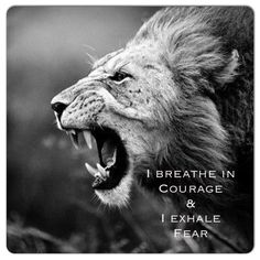 Courage comes in... No Fear comes out ❤