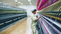 Everlane | The Cashmere Factory