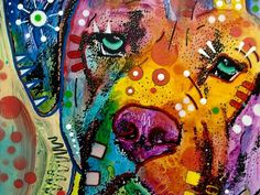 A colorful dog