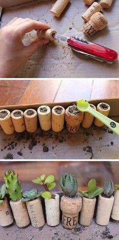 コルクそのままではなく、カッターなどで中央に穴を開けてみて。用途が広がります。 まずは、観葉植物を。