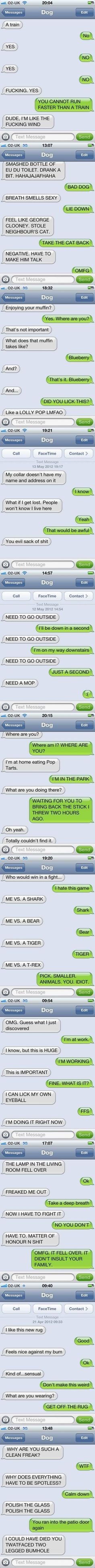 Text from dog awesomeness!