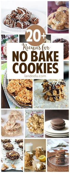 So many yummy no bake cookies dessert recipes to make! I have to try those turtle cookies ASAP!