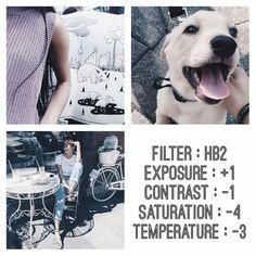 filter image
