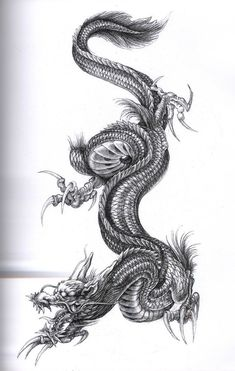 ART Body - Tattoo's - Drachen Tattoo Vorlage - Tattoo Thinks Japanese Dragon Tattoos, Japanese Tattoo Art, Body Art Tattoos, Sleeve Tattoos, Arrow Tattoo, Tattoo Templates, Worlds Best Tattoos, Asian Tattoos, Japan Tattoo