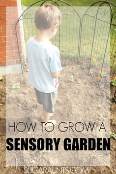 Kids can explore all of the senses in a relaxing and calming sensory garden!  Sight, smell, touch, sound, taste, proprioception, and vestibular senses are addressed with gardening!