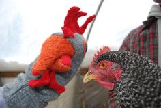 Blue Andalusian Chicken Sweater Puppet by PuddleMountainFarm, $29.00
