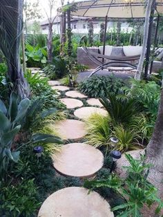 Round stepping stone paths can be a playful decoration to your yard garden. Such paths can be quite versatile depending on the style of the stepping stones. Tropical Backyard, Tropical Landscaping, Landscaping With Rocks, Tropical Houses, Backyard Landscaping, Landscaping Ideas, Modern Tropical, Landscaping Software, Round Pavers