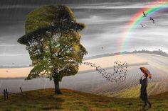 Grafika, Drzewo, Ptaki, Tęcza, Dziewczyna, Deszcz, Parasolka