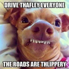 Drive thafley