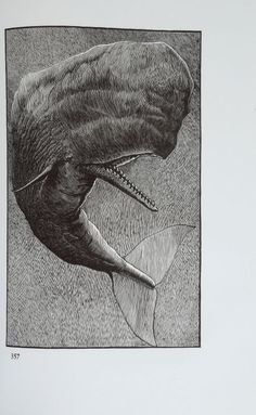 Herman Melville.  Moby-Dick; or, The Whale. Illustrations by Barry Moser