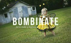Bombinate
