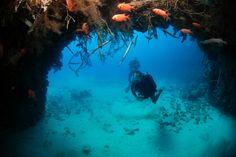 Scuba Diving in Sal, Cape Verde