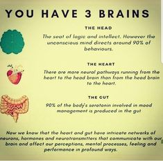 Brain, Gut and Healthy mind Brain Health, Gut Health, Health And Nutrition, Health And Wellness, Health Tips, Health Fitness, Gut Brain, Mental Health, Brain Food