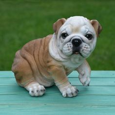 """Miniature Bulldog Statue 13""""L $46.00 This little statue is so cute!! This half size Bulldog is designed by Vivid Arts, an award winning United Kingdom innovator of outdoor garden decor."""