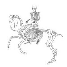 horse rider skeleton - Yahoo Image Search Results