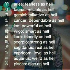 Two words: Schrödinger's cat. Scorpio Zodiac Facts, Leo Horoscope, Zodiac Signs Leo, Zodiac Quotes, Sagittarius, Aquarius, Horoscopes, Facts About People, Words Quotes