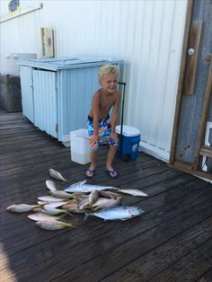Fearless Fishing Report for Sept. 3 (#Islamorada, FL): Today we fished a morning half with this young fisherman. We headed to the Hump, but didn't have much action - we caught one #Tuna. We then raced to the Reef and had a great Yellowtail #Snapper bite to secure dinner. Wind was South at around 9 knots. Seas 2 to 4 feet #fearless #fishing #charter #conch27 #captjoehendrix