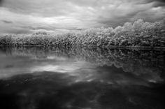 PxlShot - UNDE   Simetria in natura