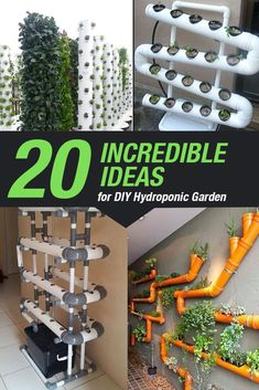 Indoor Hydroponic Gardening, Vertical Hydroponics, Hydroponic Farming, Hydroponics System, Hydroponic Vegetables, Container Plants, Container Gardening, Sustainability Projects, Landscaping Tools