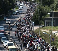 The longest walk: Migrant families block Hungary's M1 motorway yesterday as they set out in blistering heat on the 110-mile journey that will take them to the Austrian border