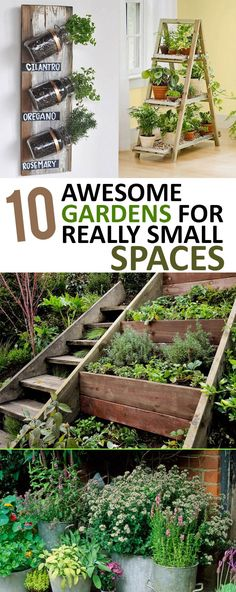 Don't have a lot of space for a garden? No worries...check out these amazing gardens that are all in small spaces!