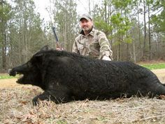 #Hunting: Boar Hunting - http://dunway.info/hunting/index.html