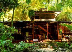 Congo Bongo - Big Dream House Front View
