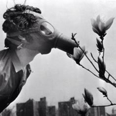 """A Pace College student in a gas mask """"smells"""" a magnolia blossom in City Hall Park on Earth Day, April 22, 1970, in New York."""