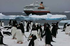 Punta Arenas - I will be there just a couple of months from now!