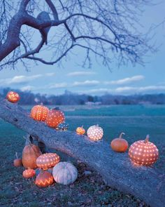 The secret to making hollowed-out pumpkins light up with constellations, zigzag dots, or random twinkling patterns? A power drill! (Yes, really.) #DIY
