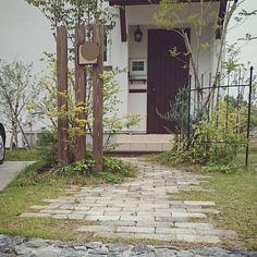女性で、4LDKの玄関ドア/ヤマボウシ/シマトネリコ/石畳/芝生/オリーブ…などについてのインテリア実例を紹介。「記念すべき100枚目の投稿は、一番人気の玄関先にしました(^-^)  」(この写真は 2016-05-24 19:46:21 に共有されました)
