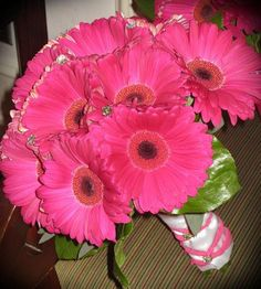 Image detail for -bridal bouquet all hot pink gerbera daisies with lemom leaf