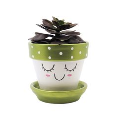 Cute Planter Face Planter Terracotta Pot Succulent Planter Plant Pot Indoor Planter Mini Planter Gift for Mom Mothers Day Gifts Small Indoor Plants, Indoor Planters, Air Plants, Indoor Herbs, Indoor Gardening, Hanging Planters, Cactus Plants, Clay Pot Projects, Clay Pot Crafts