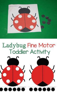 Ladybug fine motor toddler activity is great for encouraging fine motor skills in preschoolers and toddlers. This could be a wonderful addition to a Bugs Theme!