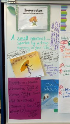 Narrative Writing Immersion Stage: 3rd Grade