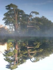 Compton Verney - Grounds