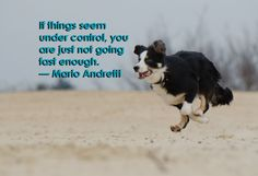 If things seem under control, you are just not going fast enough. – Mario Andretti #midweekmotivational