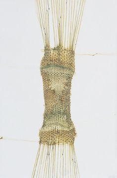 La peinture en patchwork, Fragment no 695  Tissage de cheveux no 18 (détail), 1995  (Donatrices Céline N, Julie S. et Stéphane J.)