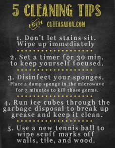 5 helpful cleaning tips from Cuteasafox.com #sprayeverydrop
