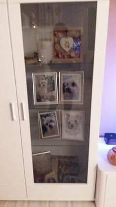 Frame, Home Decor, Animals, Homemade Home Decor, A Frame, Frames, Hoop, Decoration Home, Interior Decorating