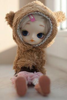 Dal bear hoodie