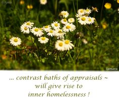 ... contrast baths of #appraisals ~ will give rise to inner #homelessness !
