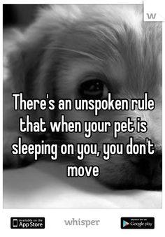 An unwritten rule ❤
