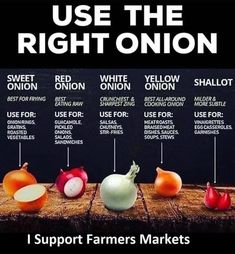 Using the right onion for cooking : coolguides Cooking Onions, Cooking 101, Cooking Recipes, Cooking Hacks, Cooking Ideas, Roasted Onions, Pickled Onions, Eating Raw, Healthy Eating
