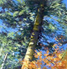 Осень Pines, Holkham