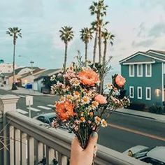 Flowers Vintage Botanical Flora 61 Ideas For 2019 Image Tumblr, Wild Flowers, Beautiful Flowers, Peach Flowers, Summer Flowers, Flower Aesthetic, Boho Aesthetic, Spring Aesthetic, Aesthetic Pictures