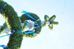 2009-08 Chiemsee