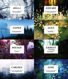 Names and meanings